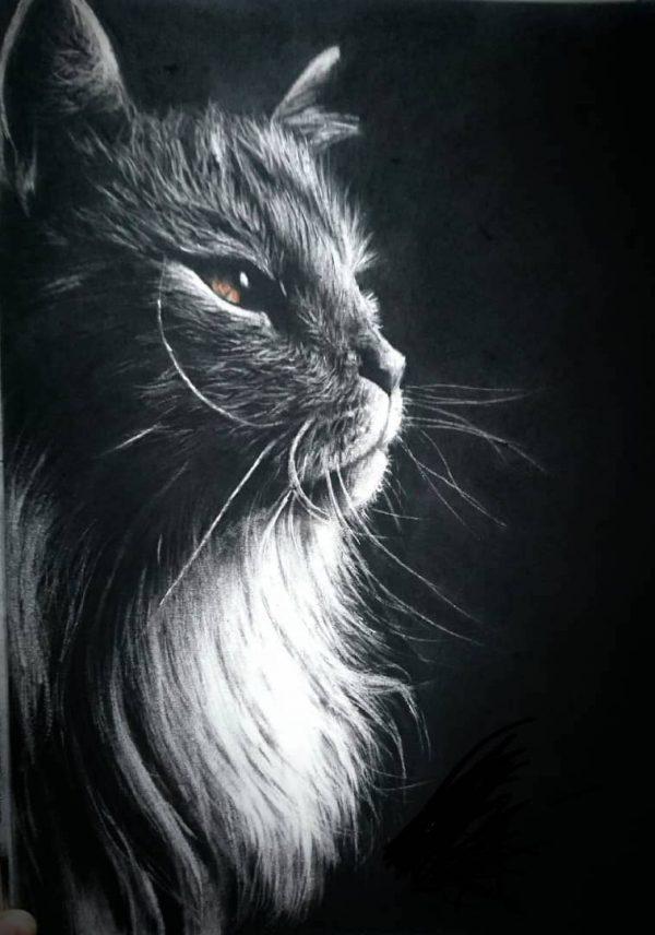 تابلو نقاشی گربه